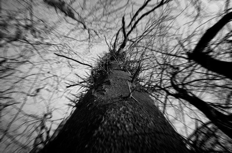 Sâmbăta Morților - Sâmbăta Morților II (Kurzreview / Albumvorstellung)