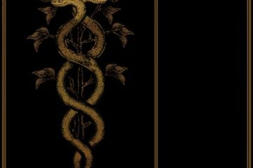 SENZAR - Non-Titled (Kurzreview / Albumvorstellung)