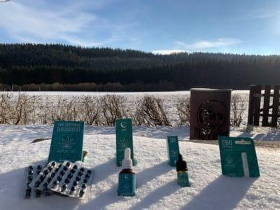 CBD-Öl als Geschenk zu Weihnachten - Cannabidiol unterm Tannenbaum