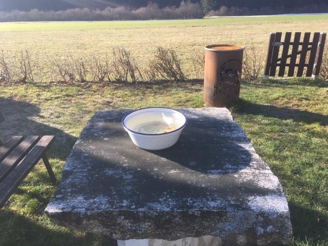 CBDonnerstag KW14/2020: Hanf – Novel Food oder Nahrungsmittel mit jahrhundertealter Tradition?