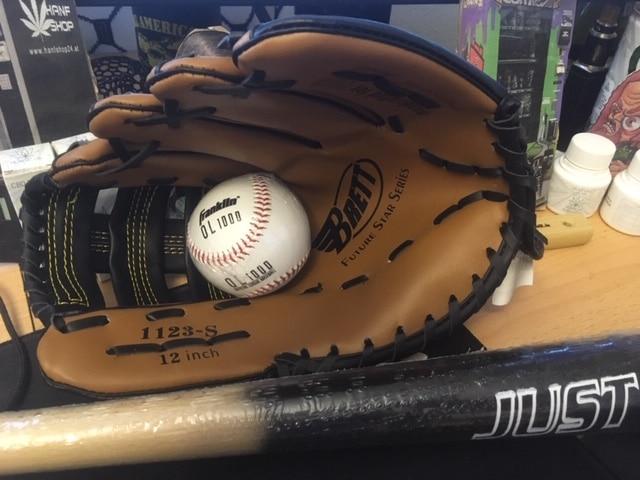 Baseball - zwischen hartem Profisport und entspanntem Familienausflug