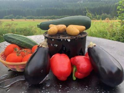 Obstanbau und Gemüseanbau als Selbstversorger wie früher