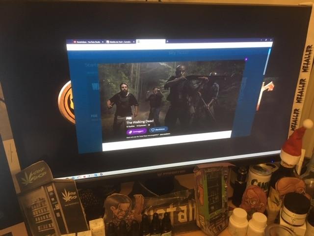 The Walking Dead Staffel 10 Episode 10 S10E10 (Folge 141) - Hinterhalt (Stalker)