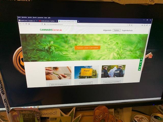 Cannabisfakten.de - ein Onlinemagazin des Deutschen Hanfverbandes