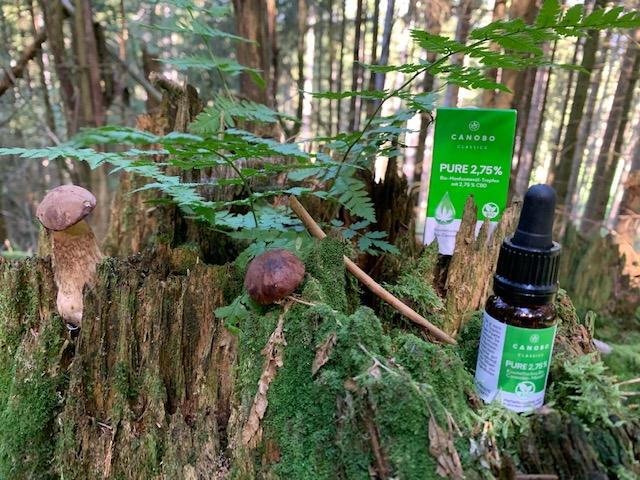 Canobo Classics Pure 2,75% Bio CBD Öl