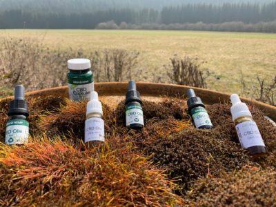 CBD Öl Tropfen: Ist die Wirkung von im Vergleich zu Kapseln besser?