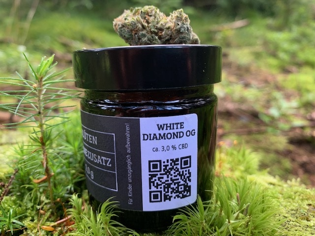 Glow Cannabis Company: CBD Blüten White Diamond OG