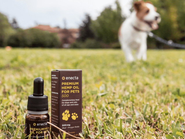 Enecta CBD für dein Haustier