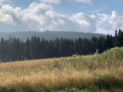 Wallenfels - das Zentrum der Region Oberes Rodachtal und Erholungsort